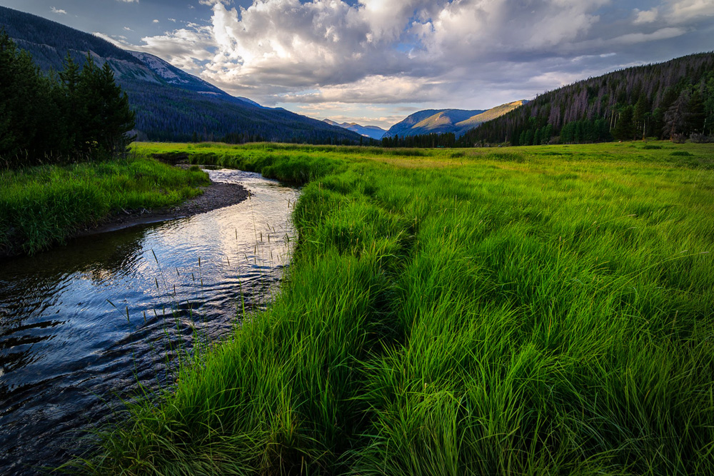 Wasim Muklashy Photography_Rocky Mountain National Park_Colorado_11.jpg