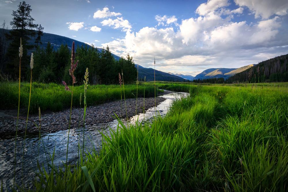 Wasim Muklashy Photography_Rocky Mountain National Park_Colorado_10.jpg