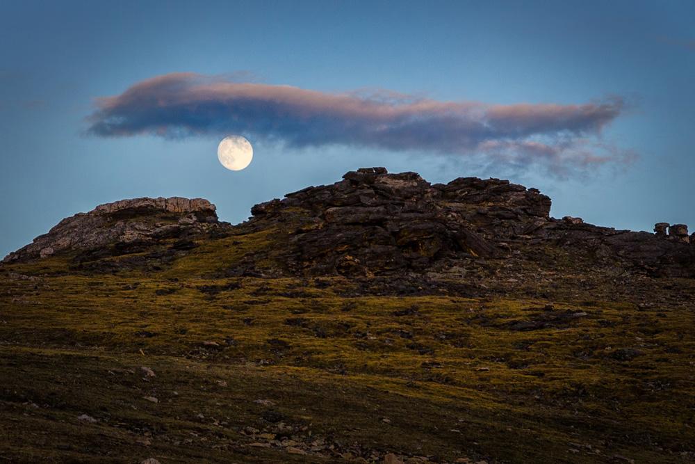 Wasim Muklashy Photography_Rocky Mountain National Park_Colorado_13.jpg