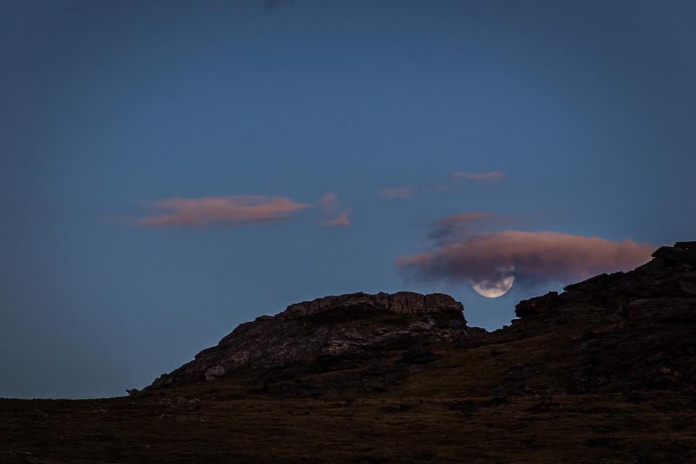Wasim Muklashy Photography_Rocky Mountain National Park_Colorado_16.jpg