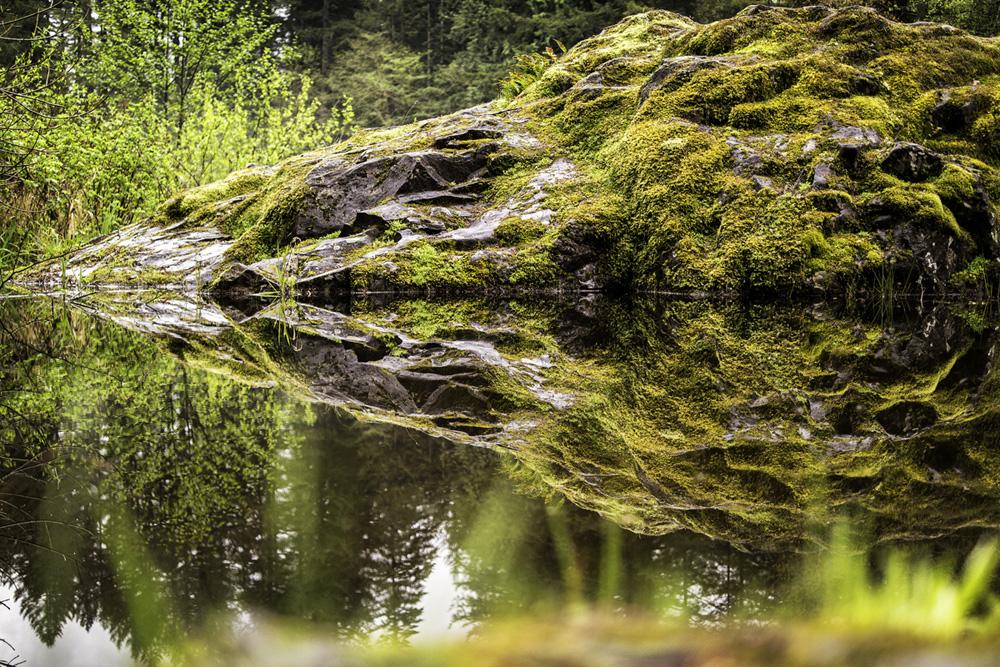 wasim muklashy photography_pacific_northwest_samsung nx30_mirrorless_31.jpg