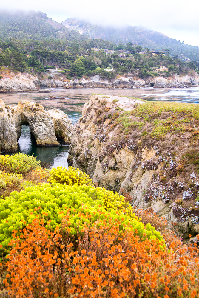 Wasim Muklashy Photography_Big Sur_California_Part 4_10.jpg