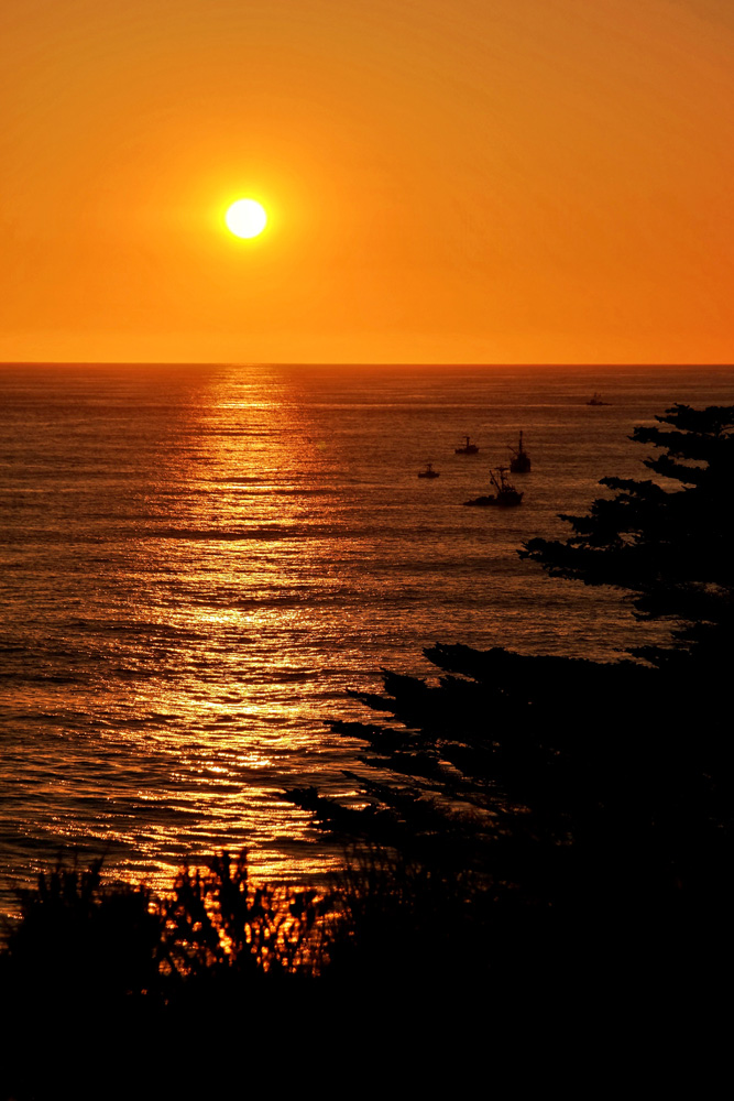 Wasim Muklashy Photography_Big Sur_California_Part 2_01.jpg