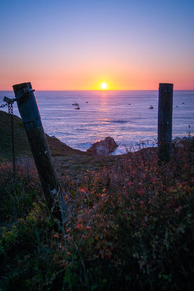 Wasim Muklashy Photography_Big Sur_California_Part 2_11.jpg