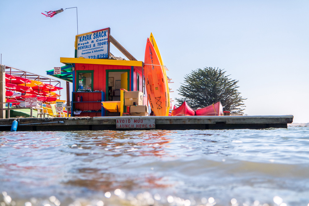 Wasim Muklashy Photography_Pacific Coast Highway_PCH_Morro Bay_California_Part 1_11.jpg