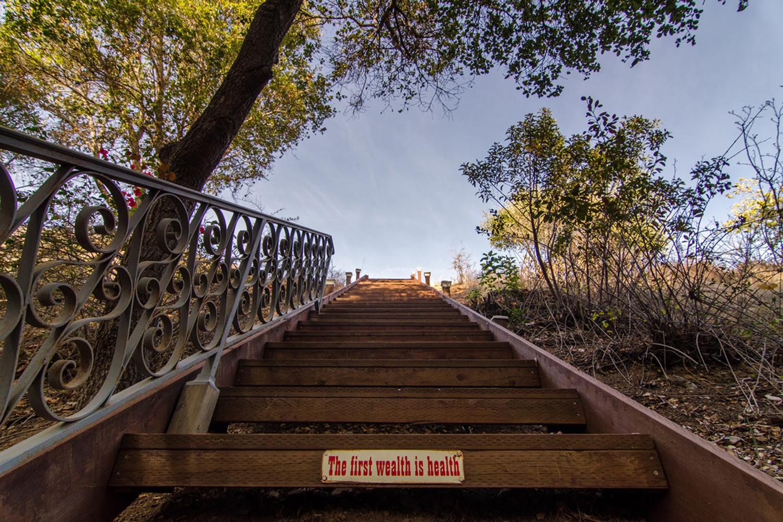 Wasim Muklashy Photography_Malibu_California_Airstream_14.jpg