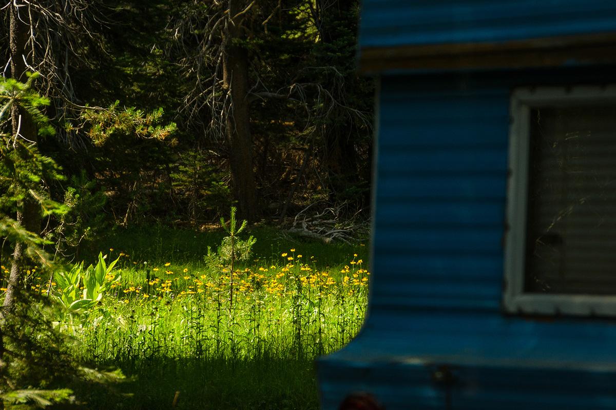Wasim Muklashy Photography_Yosemite_California_Far Meadow_Real Estate Photography_08.jpg