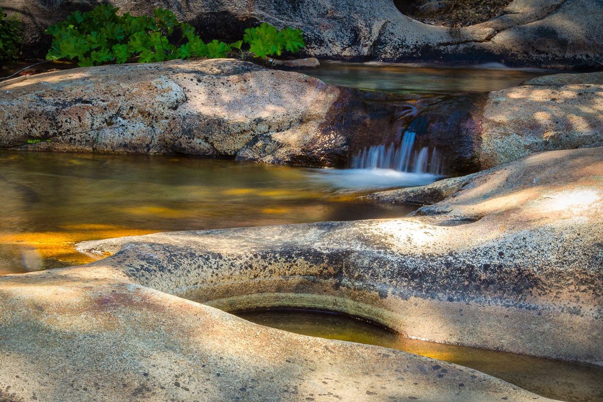 Wasim-Muklashy-Photography_Far-Meadow_Yosemite_California_36.jpg