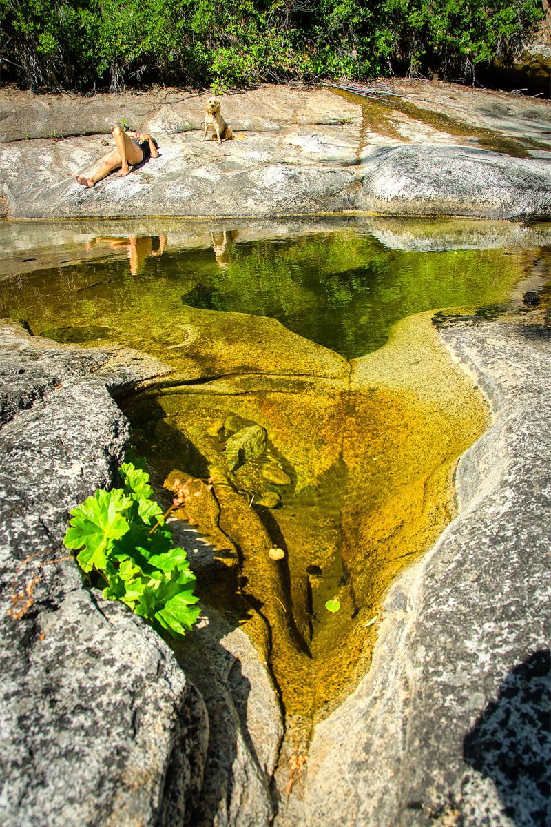 Wasim-Muklashy-Photography_Far-Meadow_Yosemite_California_39.jpg