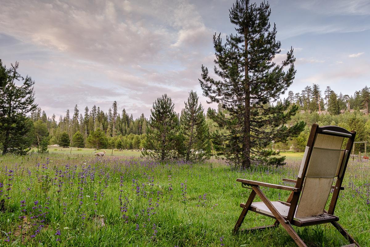 Wasim-Muklashy-Photography_Far-Meadow_Yosemite_California_09.jpg