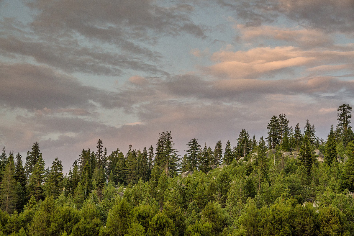 Wasim-Muklashy-Photography_Far-Meadow_Yosemite_California_10.jpg