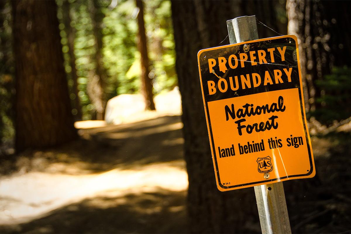 Wasim-Muklashy-Photography_Far-Meadow_Yosemite_California_47.jpg