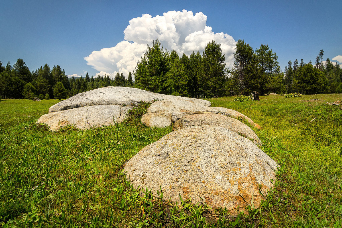 Wasim-Muklashy-Photography_Far-Meadow_Yosemite_California_24.jpg