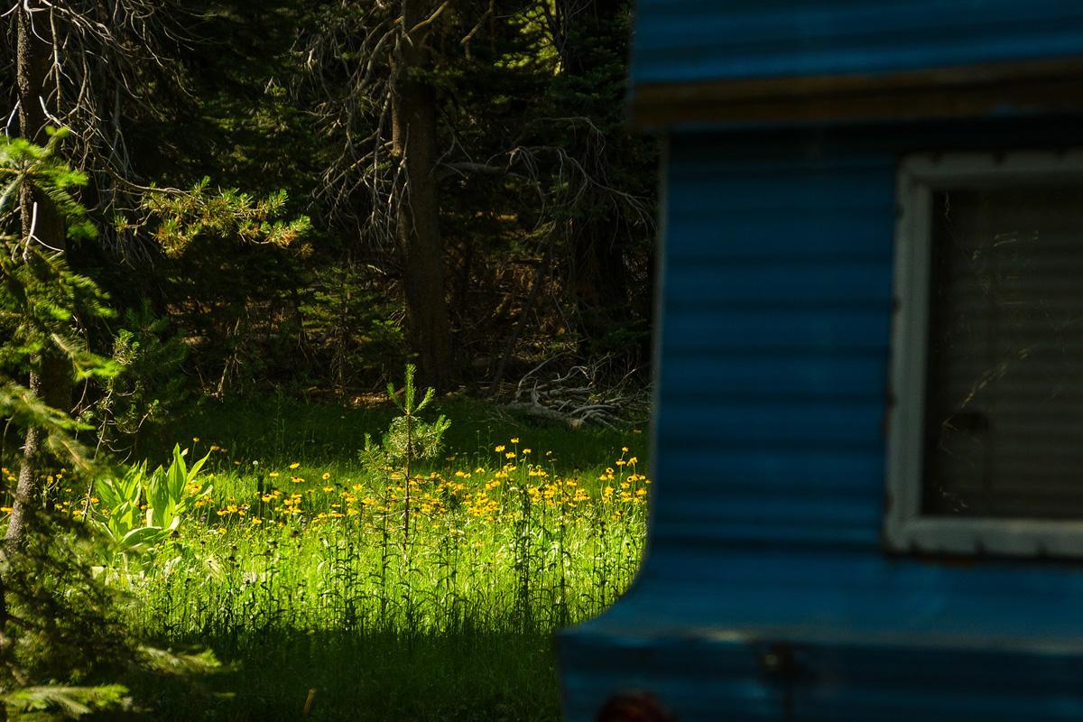 Wasim-Muklashy-Photography_Far-Meadow_Yosemite_California_27.jpg