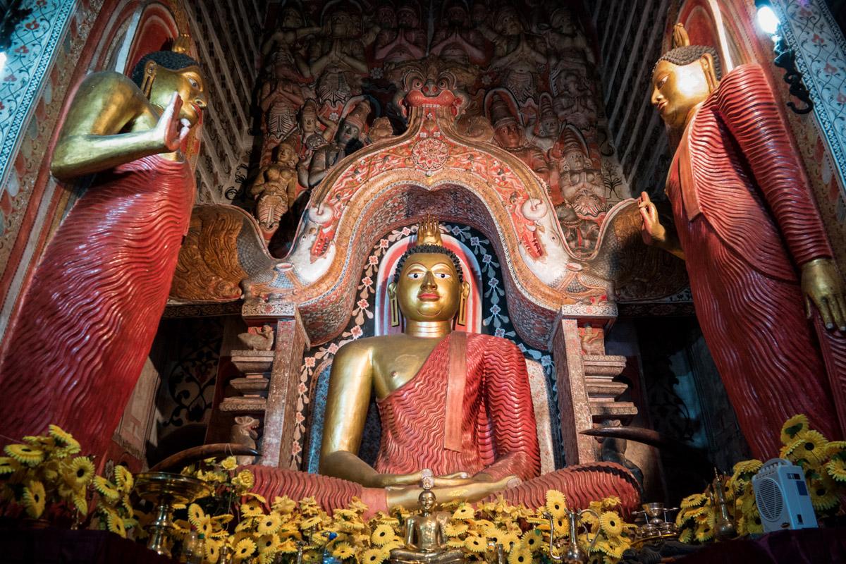 Wasim Muklashy Photography_Kandy_Sri Lanka_February 2015_Samsung NX1_18-200mm_20.jpg