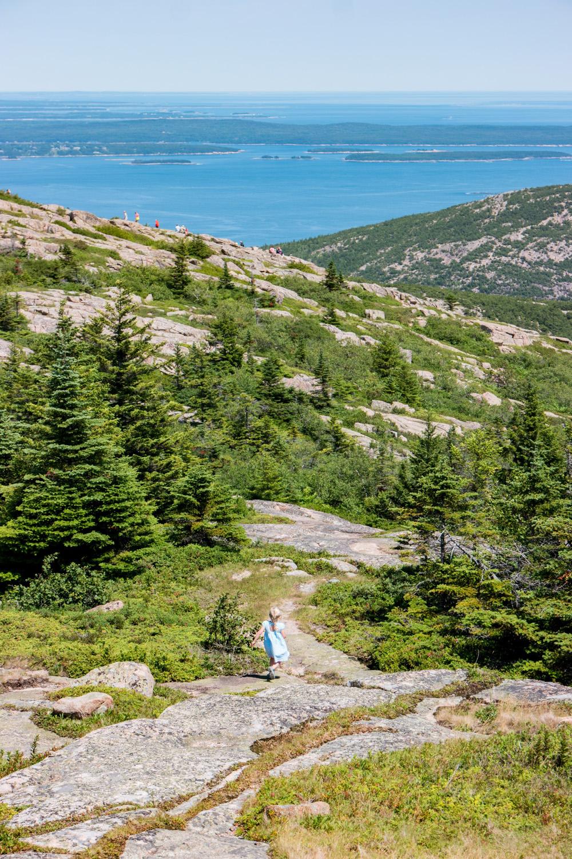 Wasim Muklashy Photography_Samsung NX500_Acadia National Park_Maine_ SAM_2762.jpg