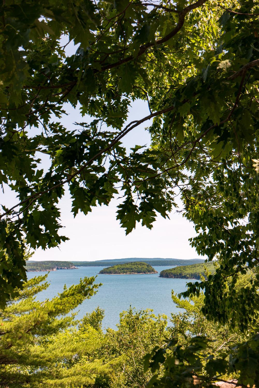 Wasim Muklashy Photography_Samsung NX500_Acadia National Park_Maine_ SAM_2737.jpg