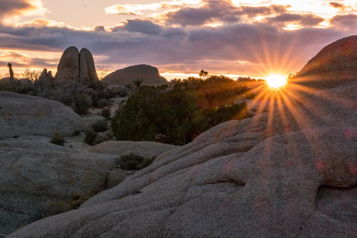 Wasim Muklashy Photography_Samsung NX1_Joshua Tree National Park_California_-SAM_2176-Edit.jpg