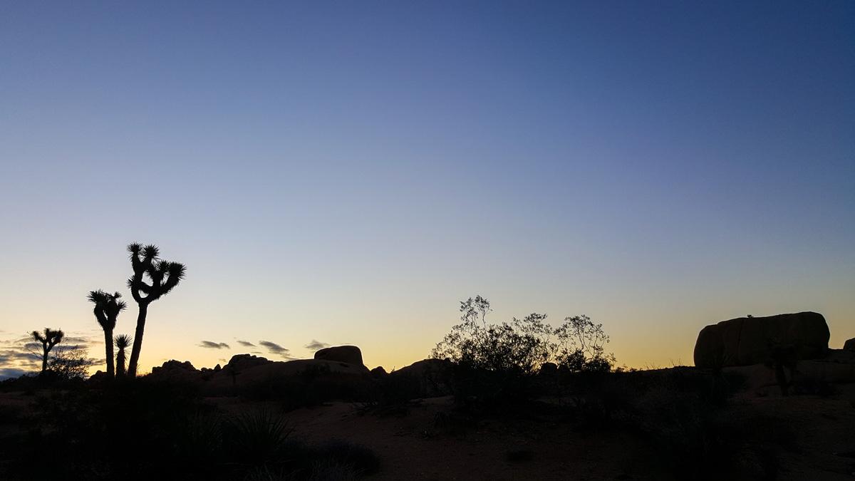 Wasim Muklashy Photography_Samsung Galaxy Note 5_Palm Desert_California_-20151127_163518.jpg