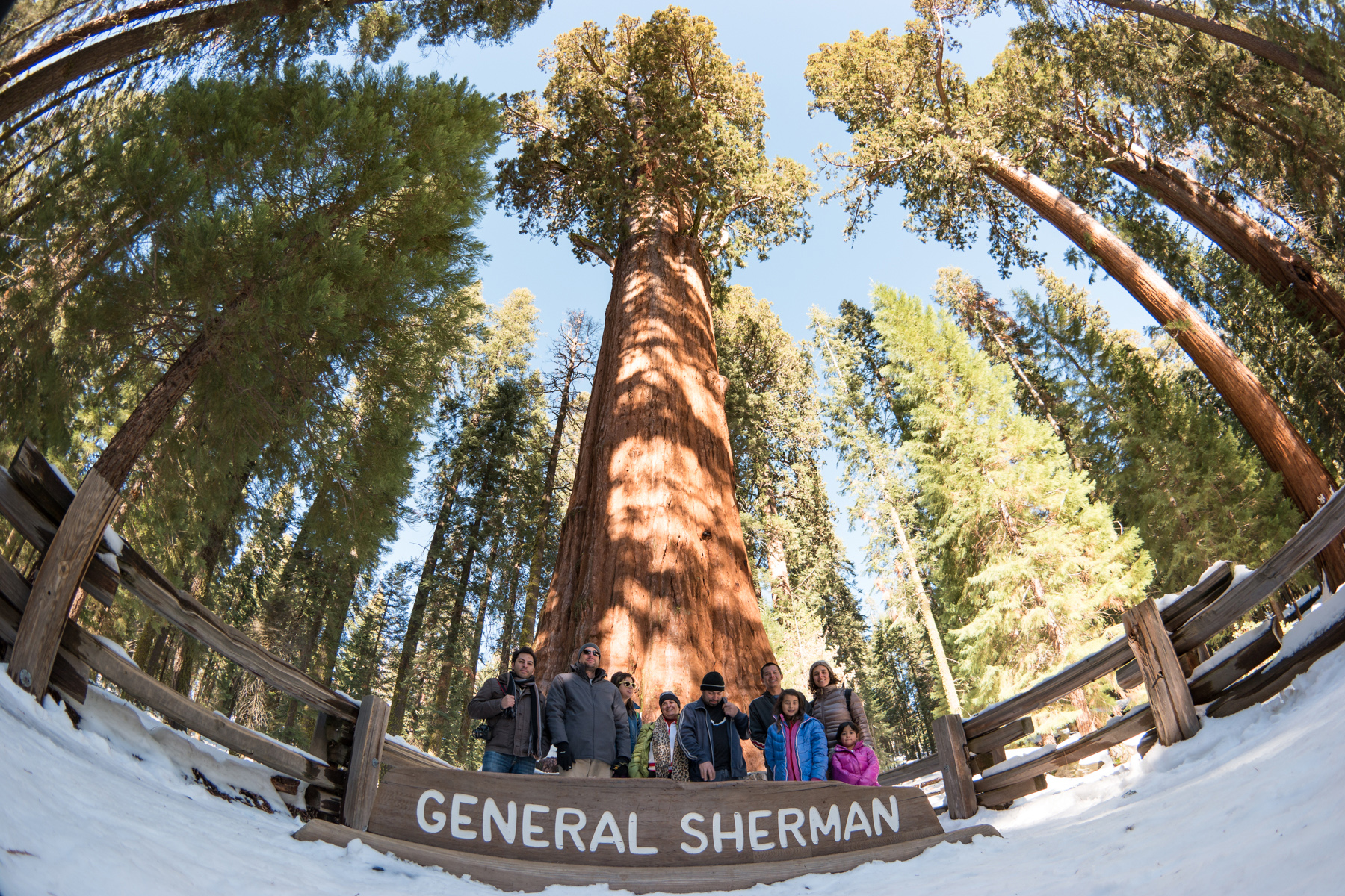 Wasim Muklashy Photography_Sequoia National Park_California_December 2015_-SAM_4595-2.jpg