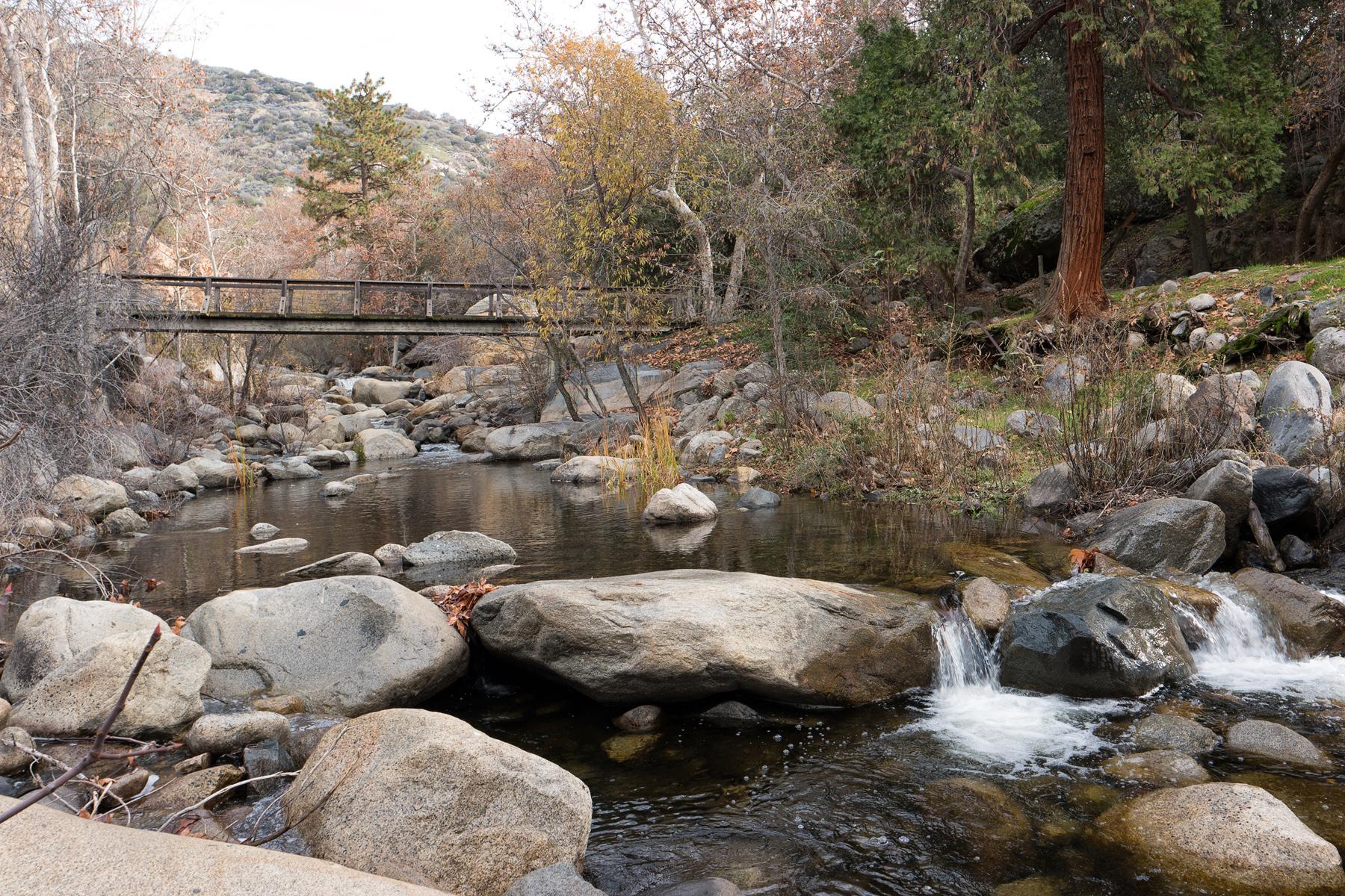 Wasim Muklashy Photography_Sequoia National Park_California_December 2015_-SAM_4688-Edit.jpg