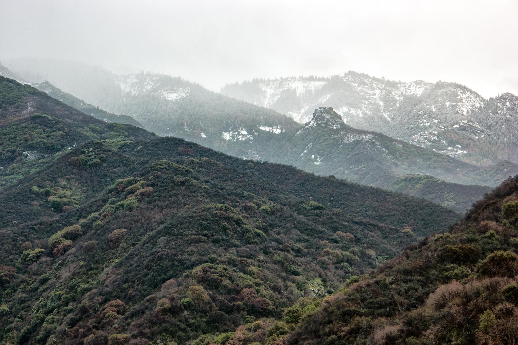 Wasim Muklashy Photography_Sequoia National Park_California_December 2015_-SAM_4771-Edit.jpg