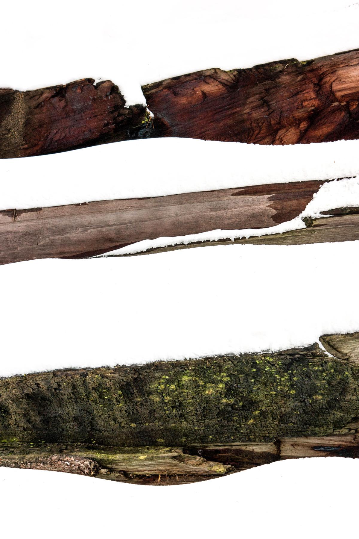 Wasim Muklashy Photography_Sequoia National Park_California_December 2015_-SAM_4116-Edit.jpg