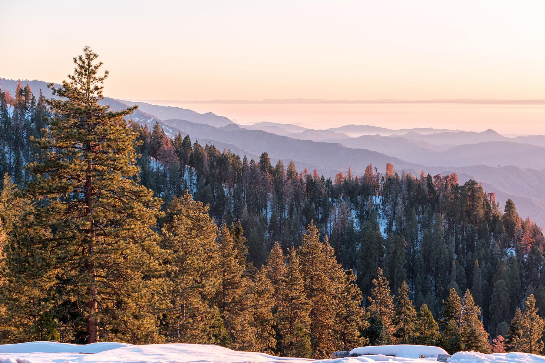 Wasim Muklashy Photography_Sequoia National Park_California_December 2015_-SAM_4164-Edit_crop1.jpg