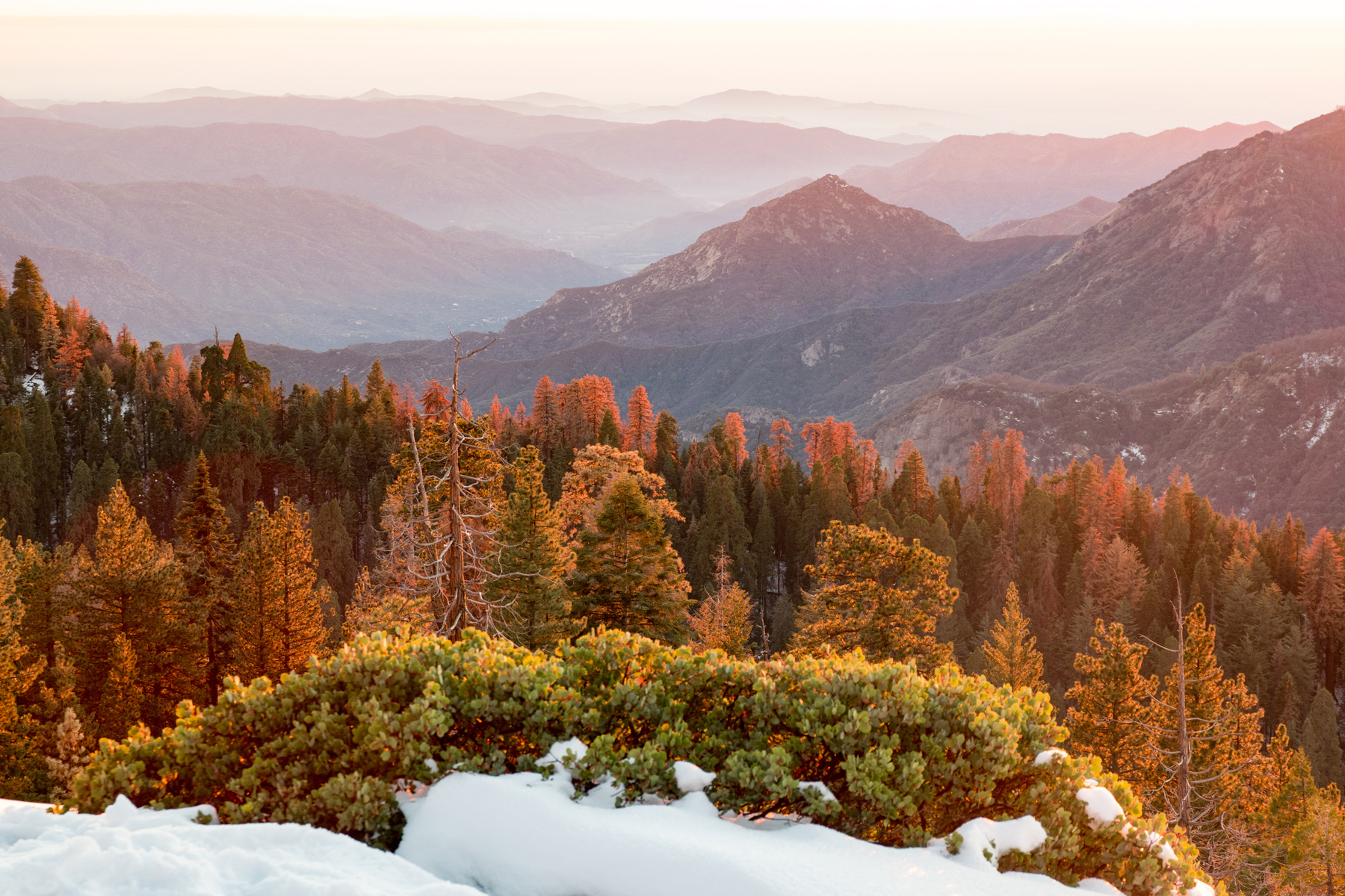 Wasim Muklashy Photography_Sequoia National Park_California_December 2015_-SAM_4182.jpg