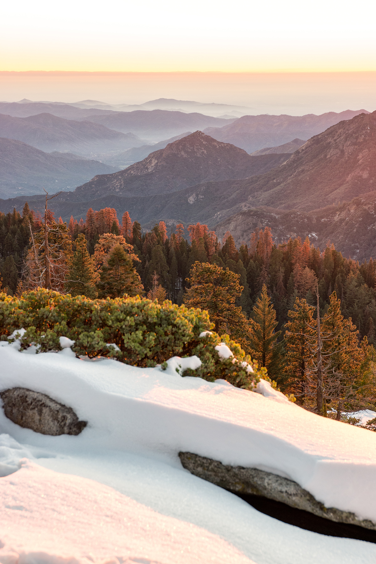 Wasim Muklashy Photography_Sequoia National Park_California_December 2015_-SAM_4188-Edit.jpg