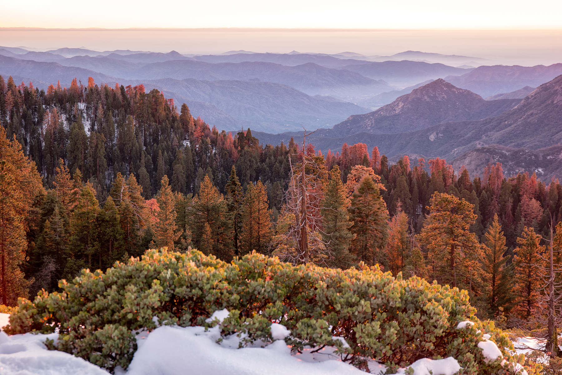 Wasim Muklashy Photography_Sequoia National Park_California_December 2015_-SAM_4189-Edit.jpg