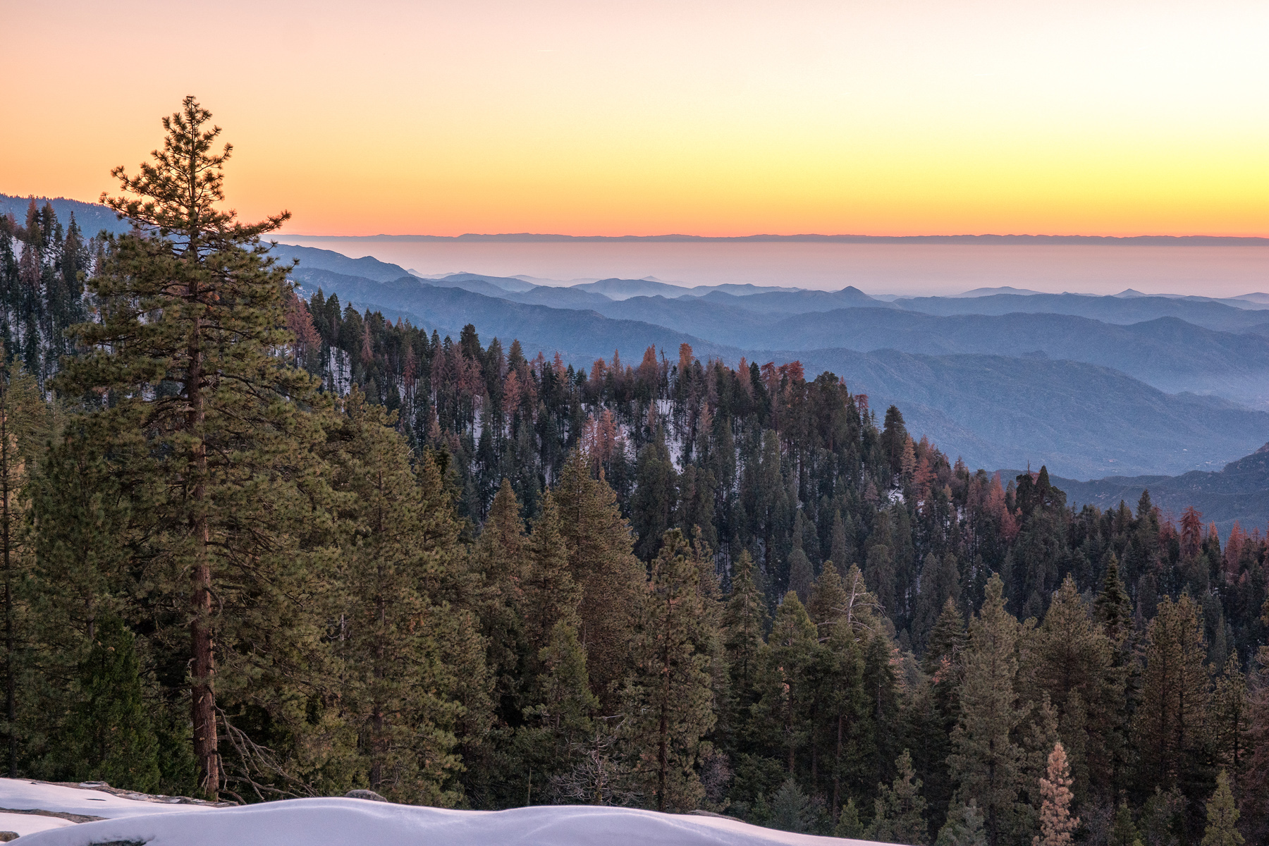 Wasim Muklashy Photography_Sequoia National Park_California_December 2015_-SAM_4205-Edit.jpg