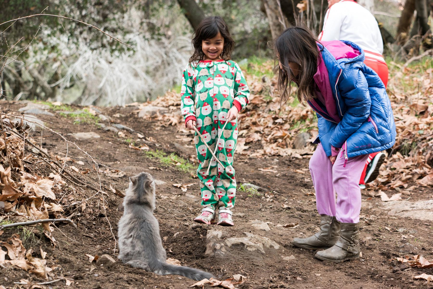 Wasim Muklashy Photography_Sequoia National Park_California_December 2015_-SAM_4230.jpg