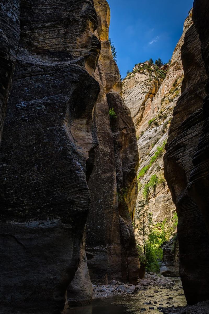 Wasim Muklashy Photography_Wasim of Nazareth_Happy Birthday National Park Service_NPS100_93.jpg
