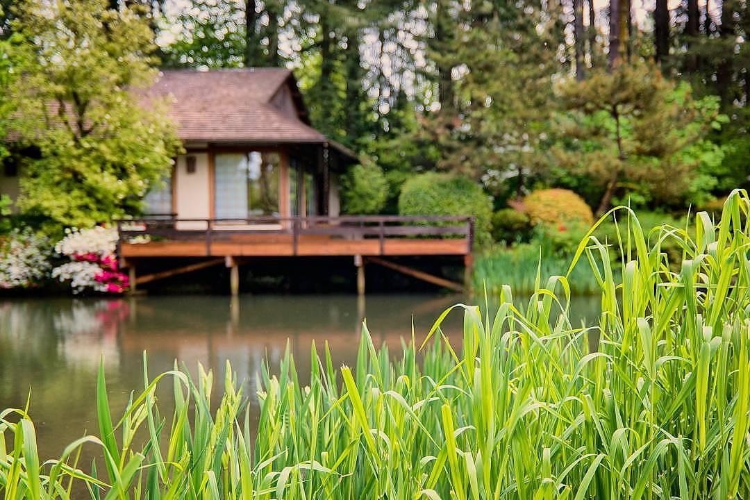 Wasim Muklashy Photography_Wasim of Nazareth Photography_Pacific Northwest_Oregon Washington_Months 1-3 Highlights_007.jpg