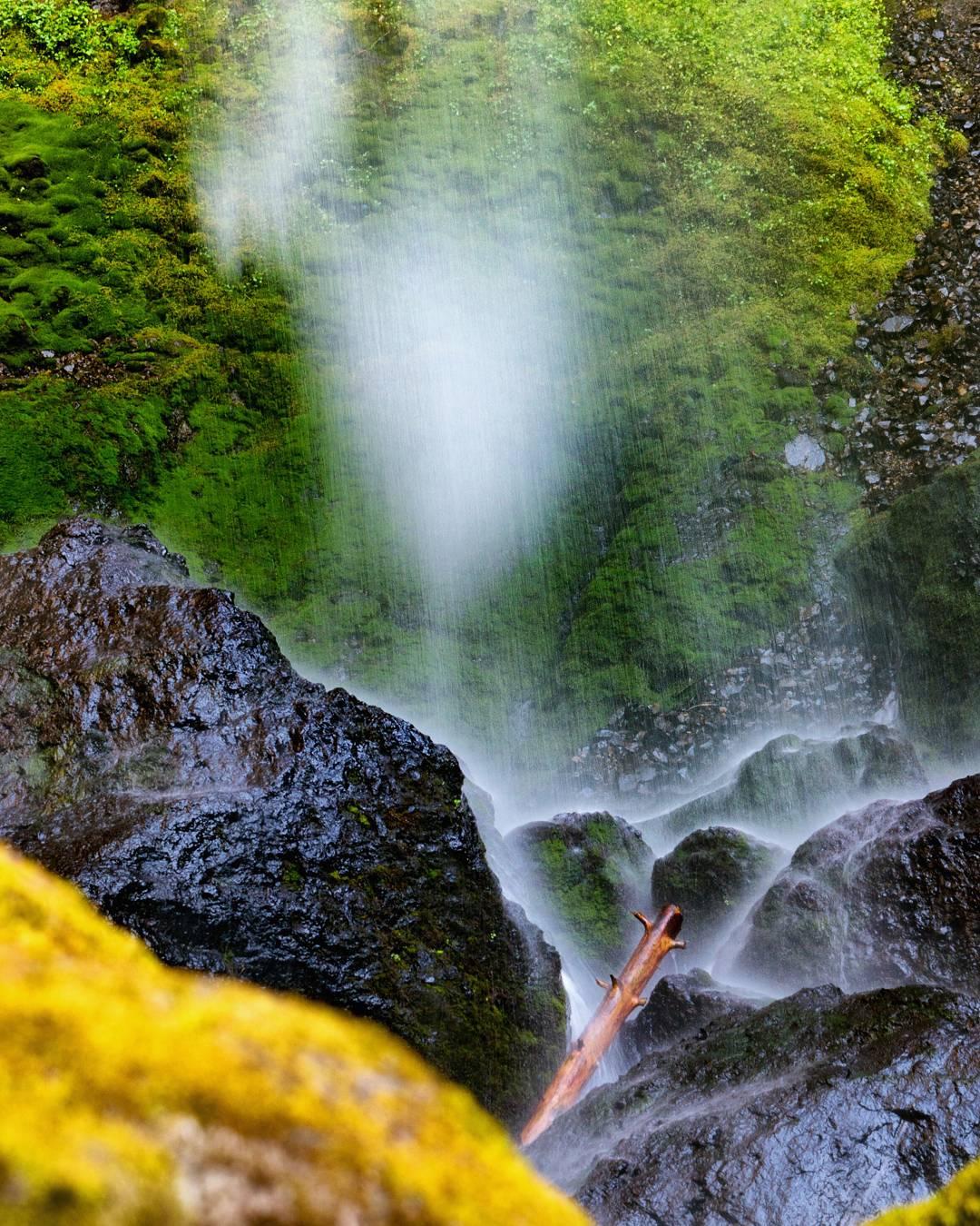 Wasim Muklashy Photography_Wasim of Nazareth Photography_Pacific Northwest_Oregon Washington_Months 1-3 Highlights_044.jpg