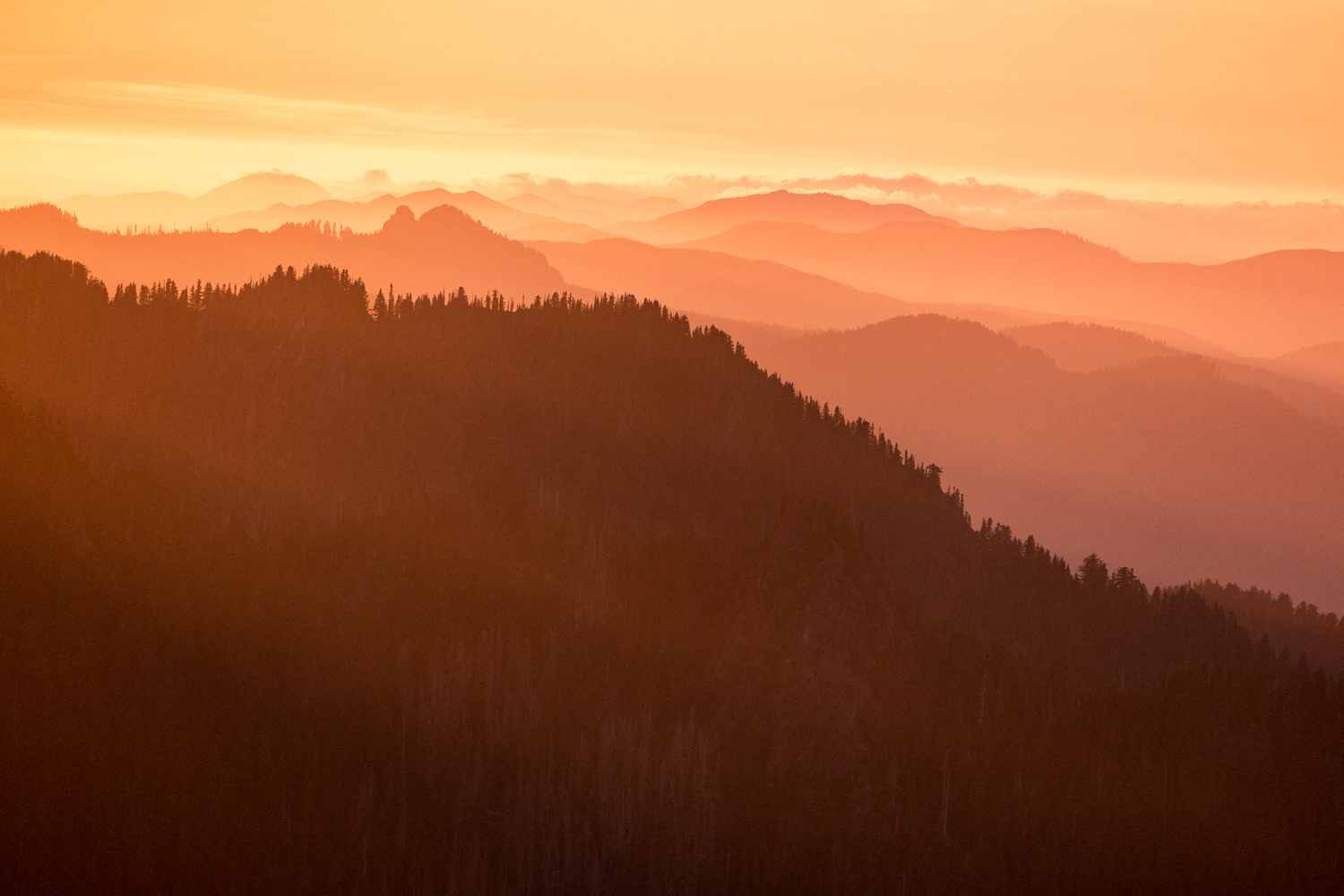 Wasim Muklashy Photography_Olympic National Park_High Divide Loop_032.jpg