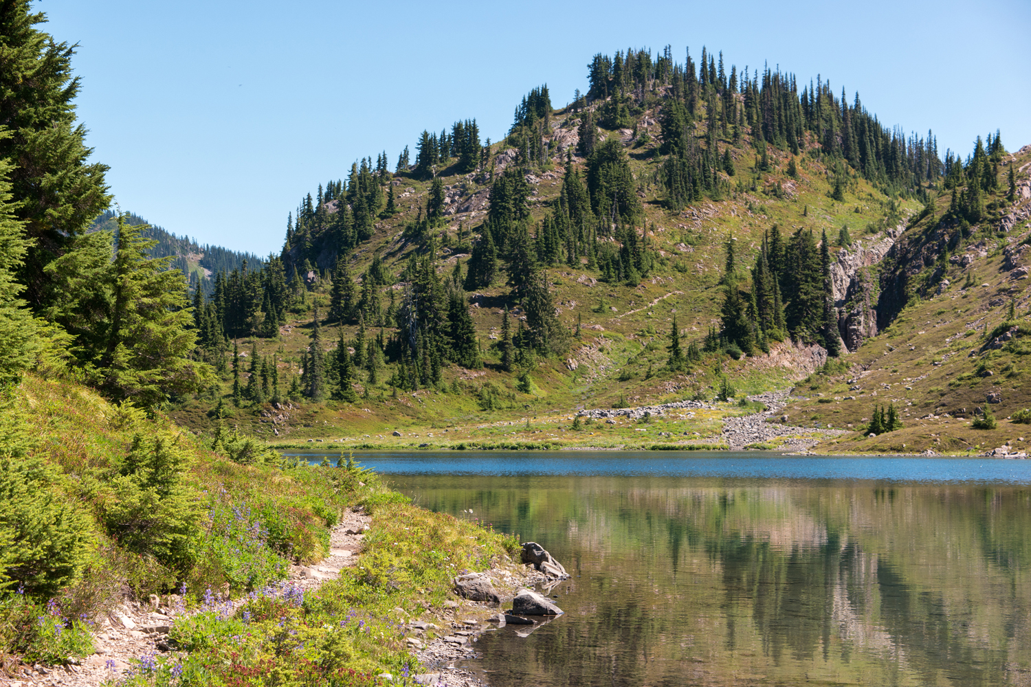 Wasim Muklashy Photography_Olympic National Park_High Divide Loop_076.jpg