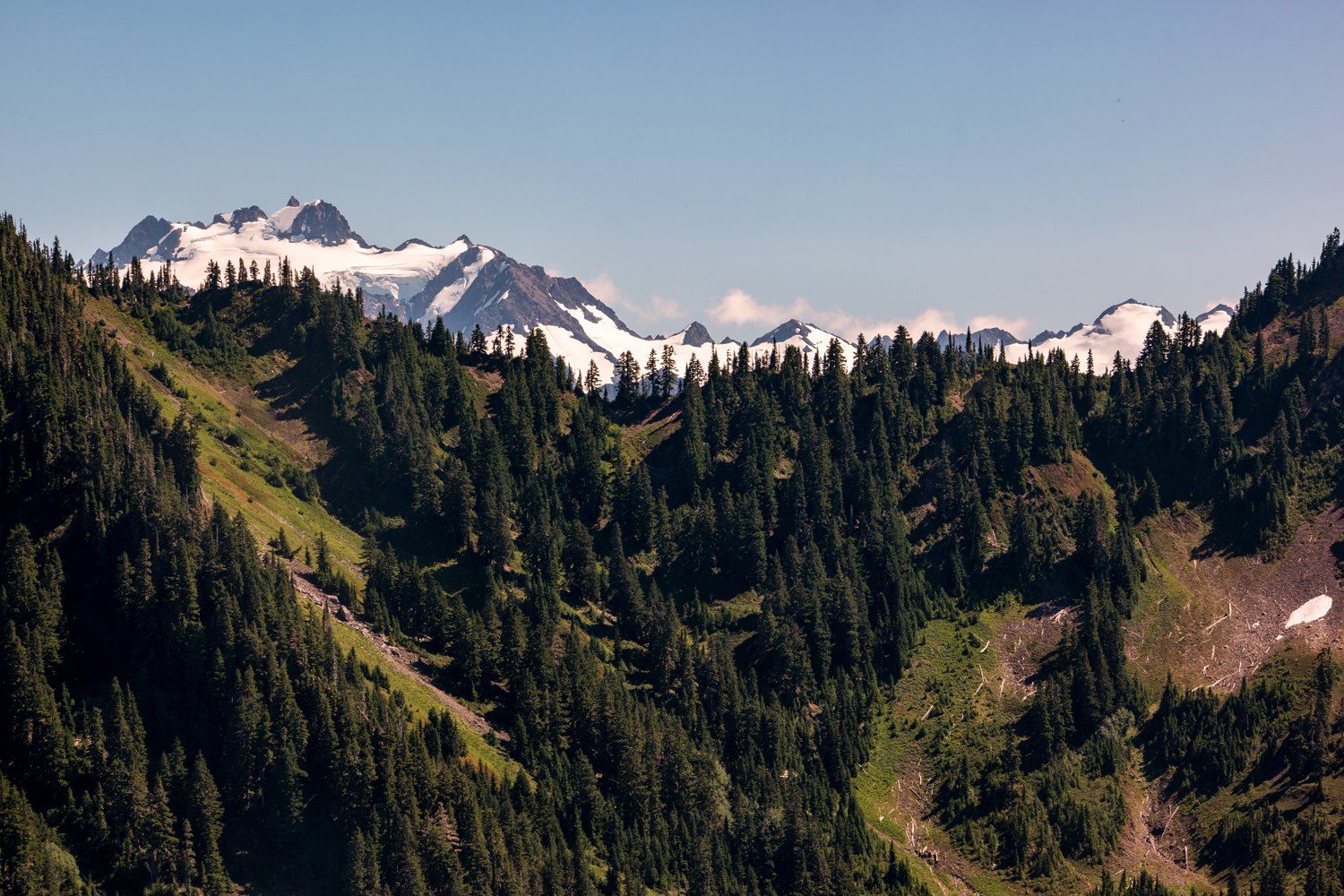 Wasim Muklashy Photography_Olympic National Park_High Divide Loop_080.jpg