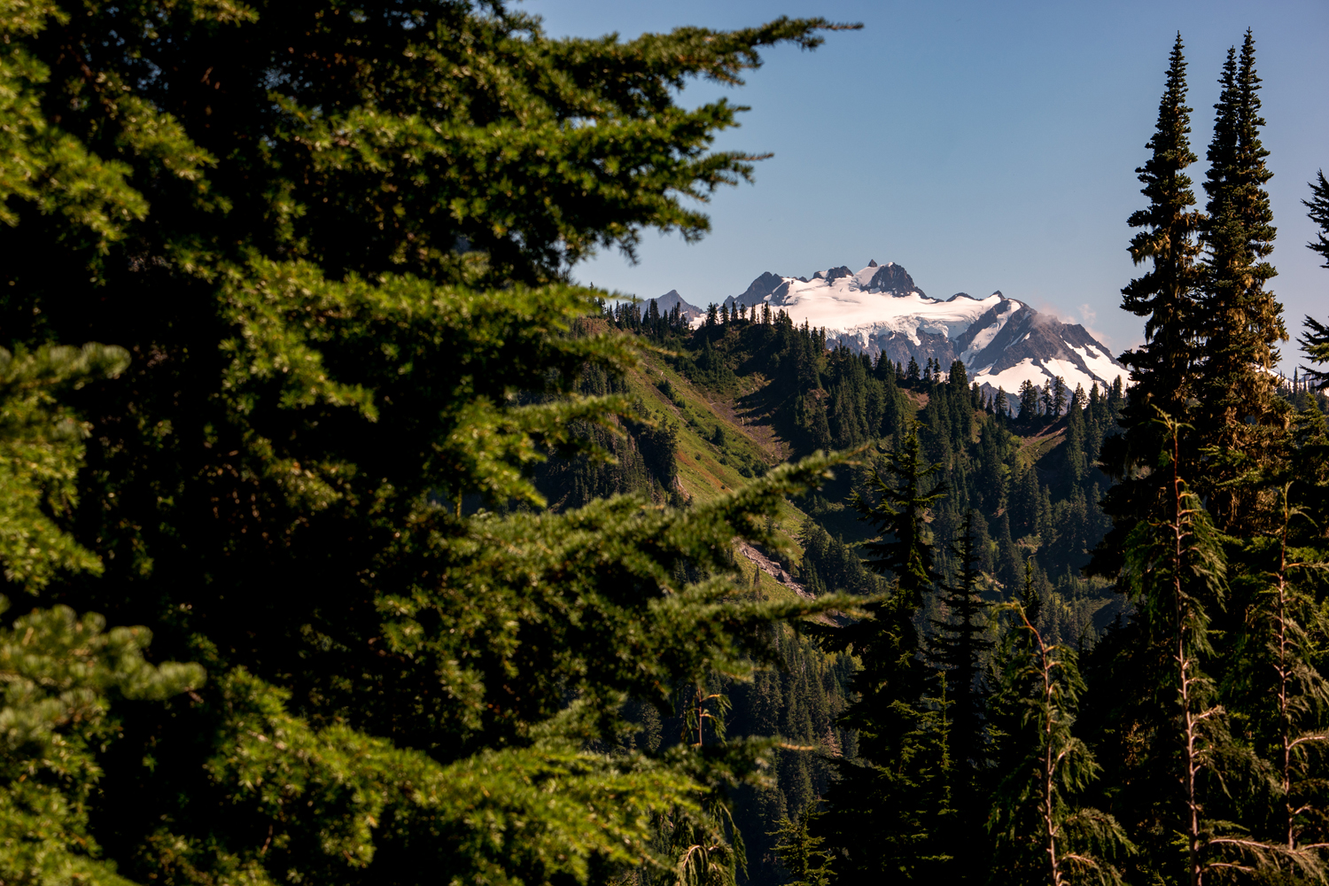 Wasim Muklashy Photography_Olympic National Park_High Divide Loop_084.jpg