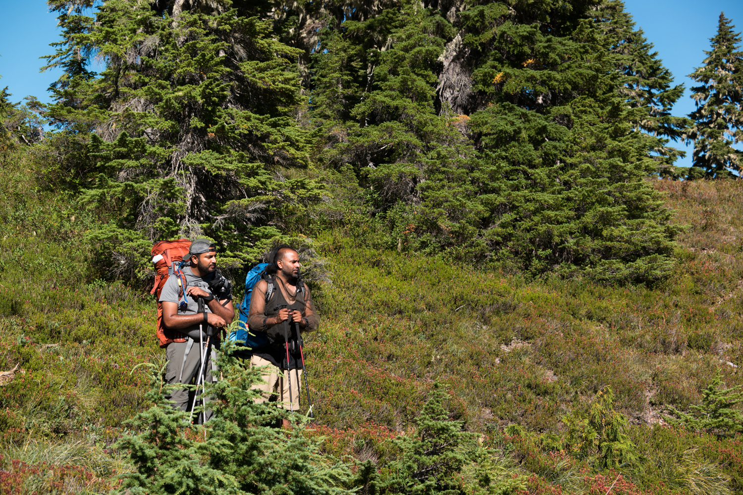 Wasim Muklashy Photography_Olympic National Park_High Divide Loop_103.jpg