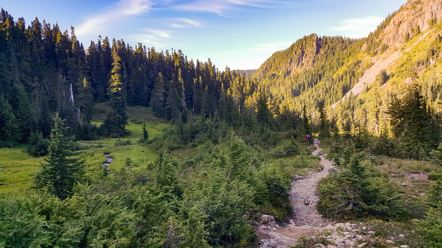 Wasim Muklashy Photography_Olympic National Park_High Divide Loop_115.jpg
