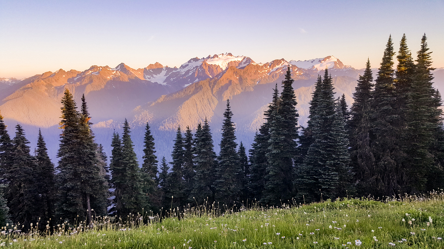 Wasim Muklashy Photography_Olympic National Park_High Divide Loop_119.jpg