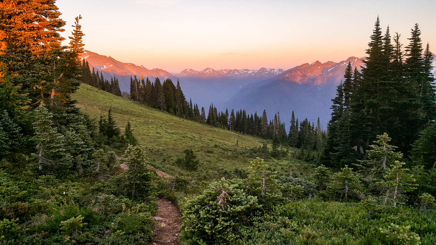 Wasim Muklashy Photography_Olympic National Park_High Divide Loop_121.jpg