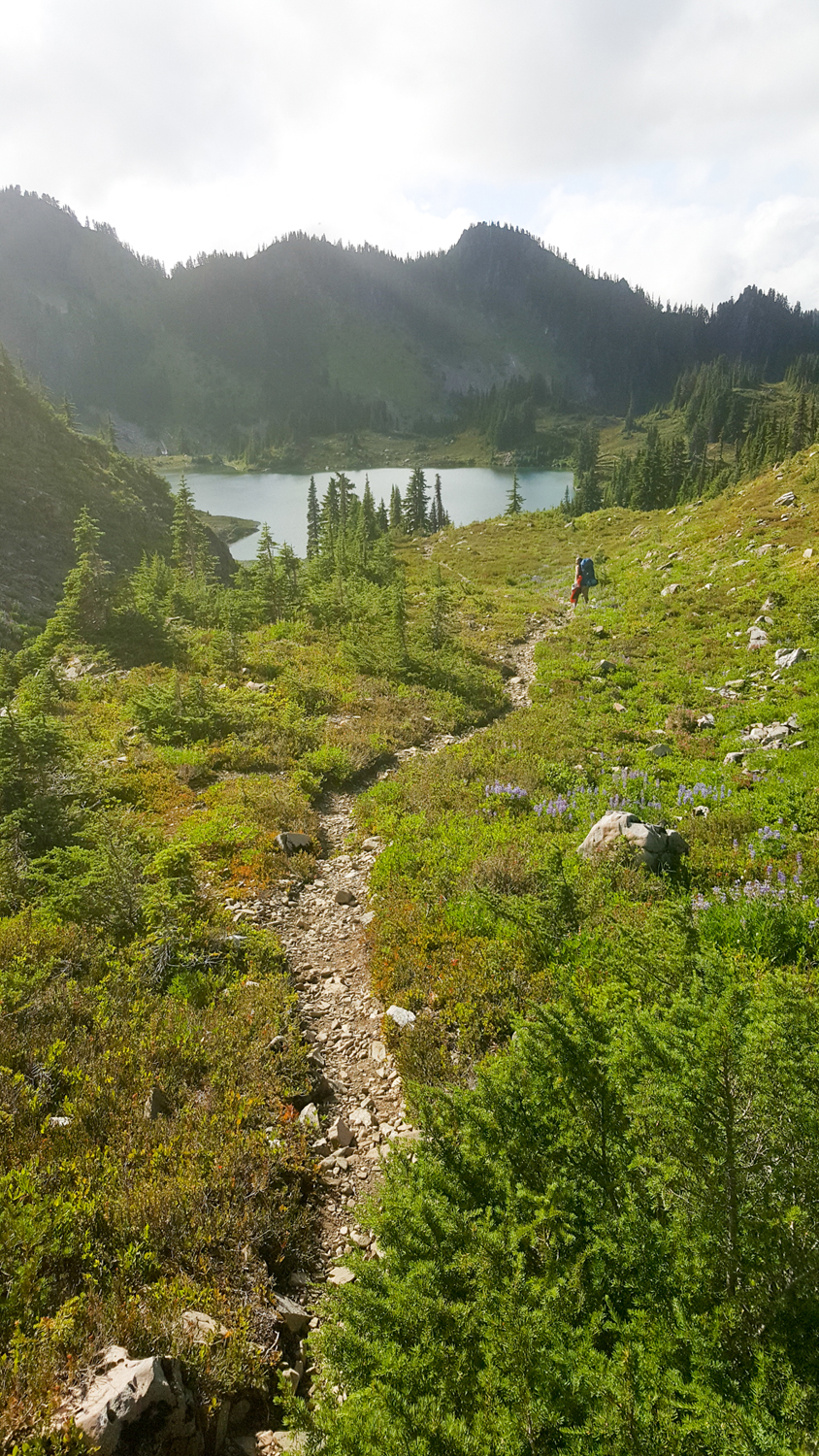 Wasim Muklashy Photography_Olympic National Park_High Divide Loop_128.jpg