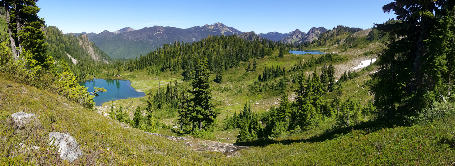 Wasim Muklashy Photography_Olympic National Park_High Divide Loop_137.jpg