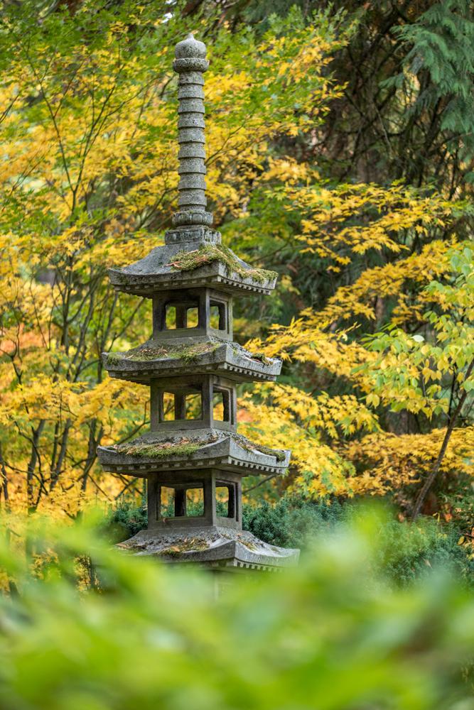 Wasim Muklashy Photography_Wasim of Nazareth_Japanese Garden_Fall_Portland_Oregon_10.jpg