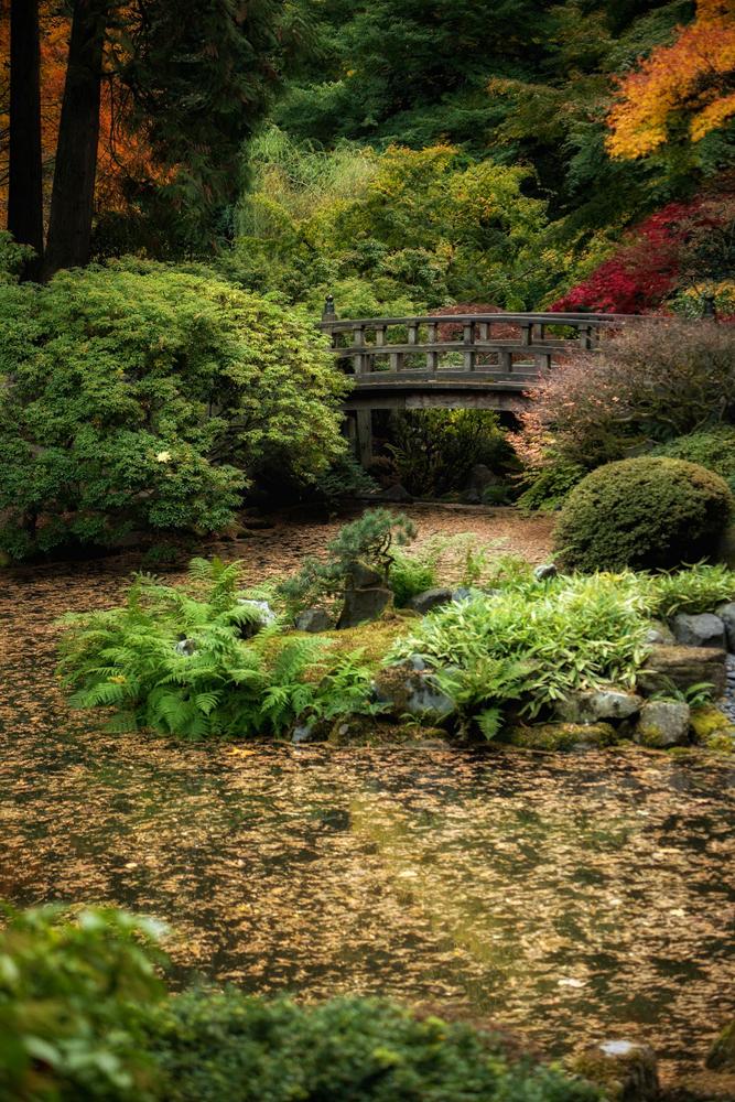 Wasim Muklashy Photography_Wasim of Nazareth_Japanese Garden_Fall_Portland_Oregon_41.jpg