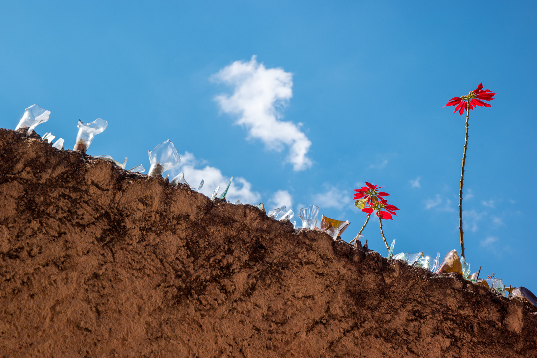 Wasim Muklashy Photography_Guanajuato_Mexico_005.jpg