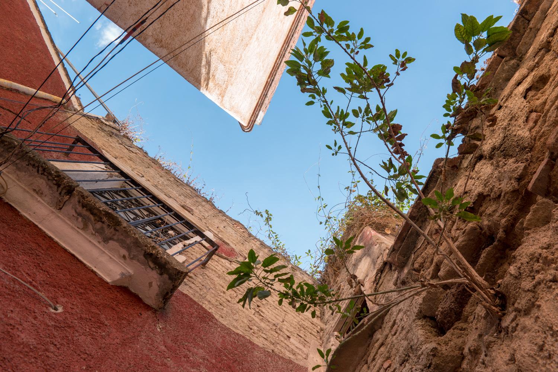 Wasim Muklashy Photography_Travel_Guanajuato_Mexico_144.jpg